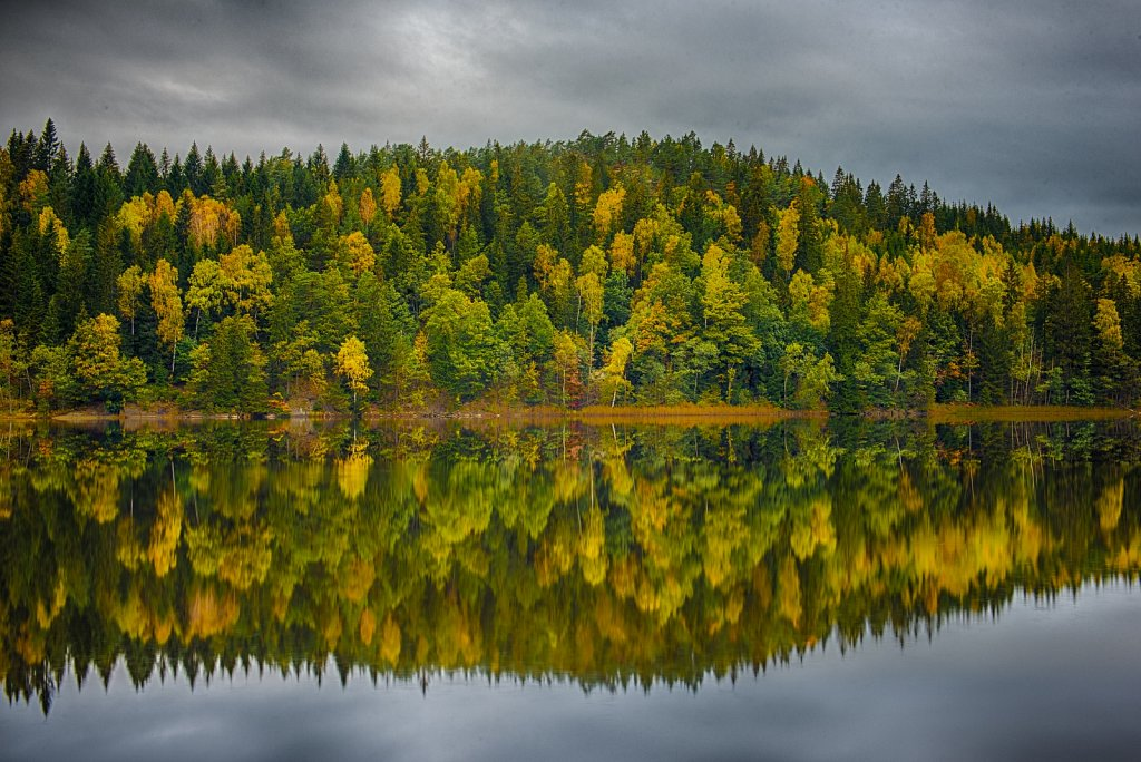 Autumn in Sweden - 2015